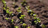 2021년 친환경 인증 농업인 의무교육 추진
