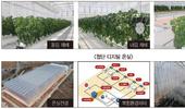 참외 연작피해 없이 재배 가능한 첨단 디지털 온실