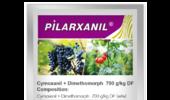 감자 역병 새로운 해결책…'PILARXANIL' 부상