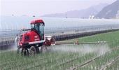 양파 정식~수확·저장까지 전 과정 기계화 속도 낸다